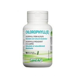 Vegetable Chlorophyll capsules
